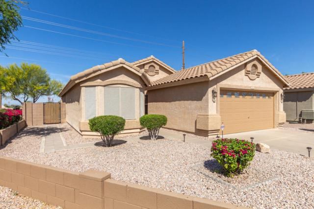 720 S 108TH Place, Mesa, AZ 85208 (MLS #5913048) :: Power Realty Group Model Home Center