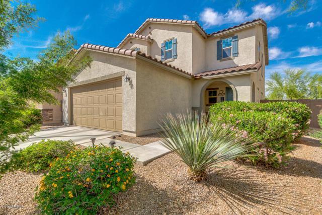 40364 W Molly Lane, Maricopa, AZ 85138 (MLS #5913060) :: Occasio Realty