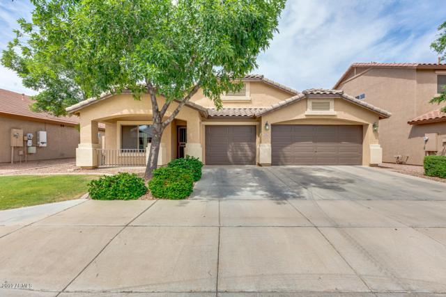 12314 W Berridge Lane, Litchfield Park, AZ 85340 (MLS #5913063) :: The Garcia Group