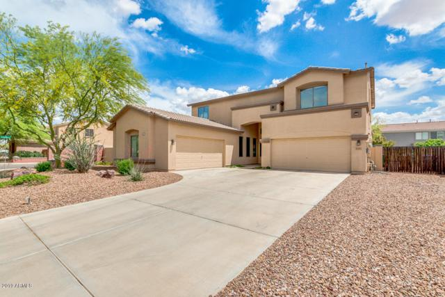 10365 E Los Lagos Vista Avenue, Mesa, AZ 85209 (MLS #5913068) :: Power Realty Group Model Home Center