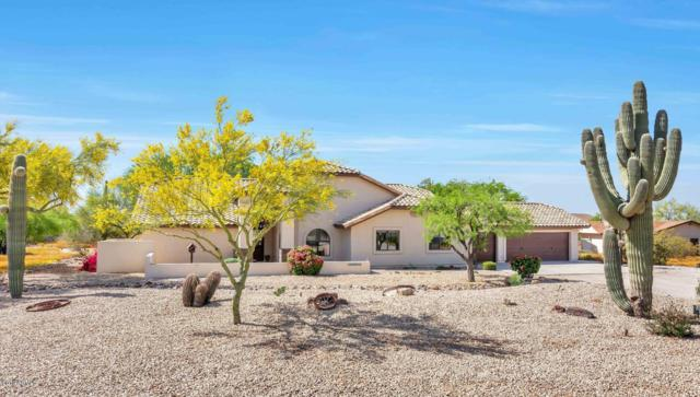 25831 N 102nd Avenue, Peoria, AZ 85383 (MLS #5913069) :: Power Realty Group Model Home Center