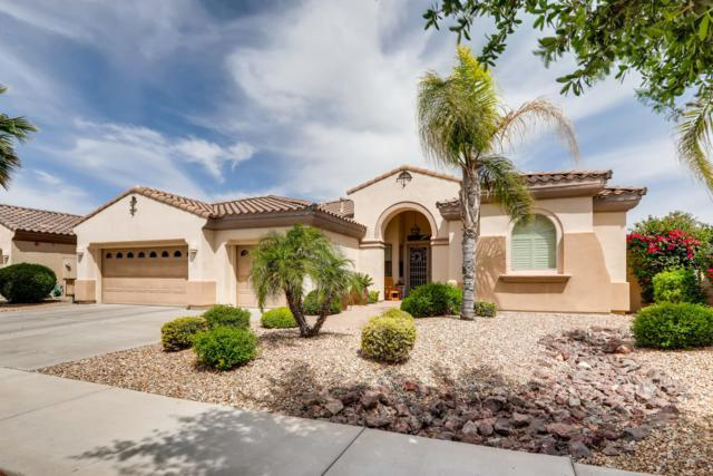 900 W Orchard Lane, Litchfield Park, AZ 85340 (MLS #5913071) :: Kortright Group - West USA Realty