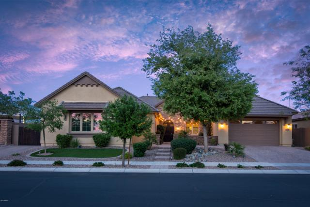 20773 S 193RD Place, Queen Creek, AZ 85142 (MLS #5913075) :: Power Realty Group Model Home Center