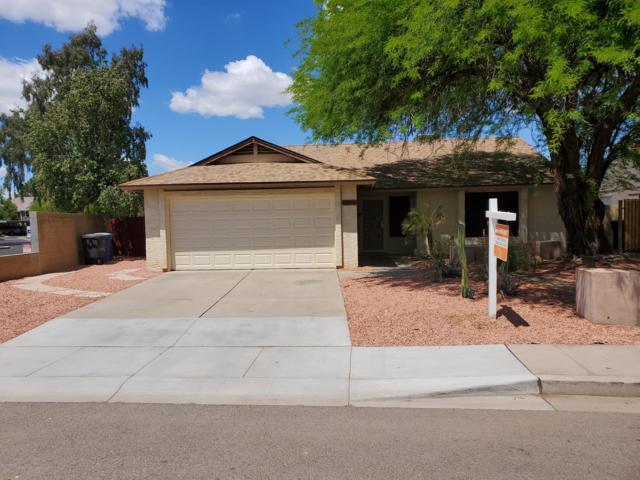 5830 W Frye Road, Chandler, AZ 85226 (MLS #5913078) :: Power Realty Group Model Home Center