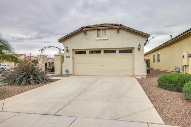 20583 N 262ND Avenue, Buckeye, AZ 85396 (MLS #5913098) :: The Results Group