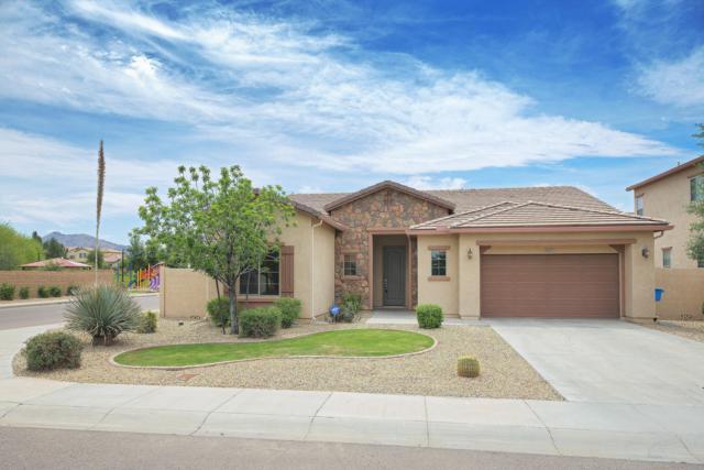 5217 W Branham Lane, Laveen, AZ 85339 (MLS #5913110) :: The Garcia Group