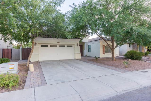 1217 E Benrich Drive, Gilbert, AZ 85295 (MLS #5913111) :: Occasio Realty