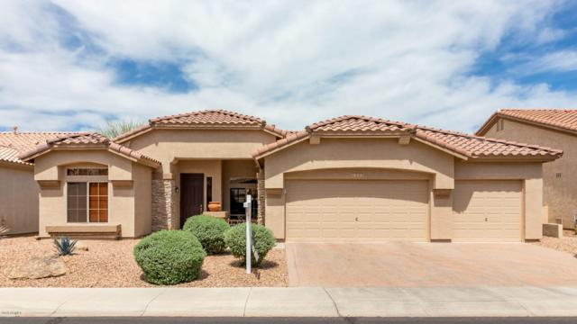 4322 E Chestnut Lane, Gilbert, AZ 85298 (MLS #5913155) :: Revelation Real Estate