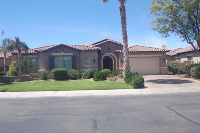 5142 S Miller Place, Chandler, AZ 85249 (MLS #5913158) :: CC & Co. Real Estate Team