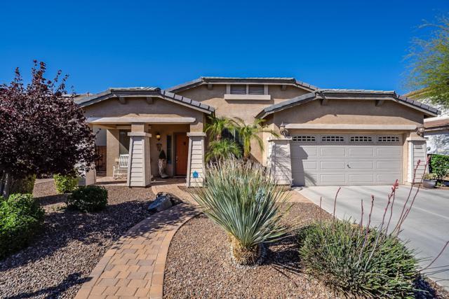 13518 W Catalina Drive, Avondale, AZ 85392 (MLS #5913199) :: Yost Realty Group at RE/MAX Casa Grande