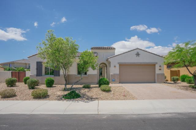 2376 N 156TH Drive, Goodyear, AZ 85395 (MLS #5913205) :: Kortright Group - West USA Realty