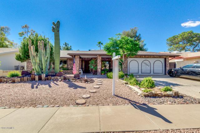 12002 S Tomi Drive, Phoenix, AZ 85044 (MLS #5913211) :: Kepple Real Estate Group