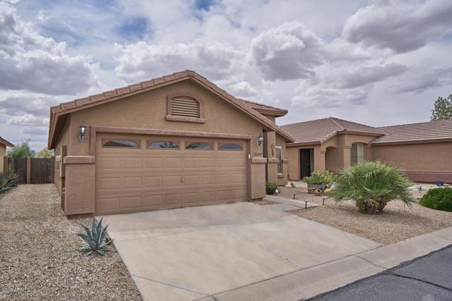 31207 N Claridge Circle, San Tan Valley, AZ 85143 (MLS #5913217) :: Team Wilson Real Estate