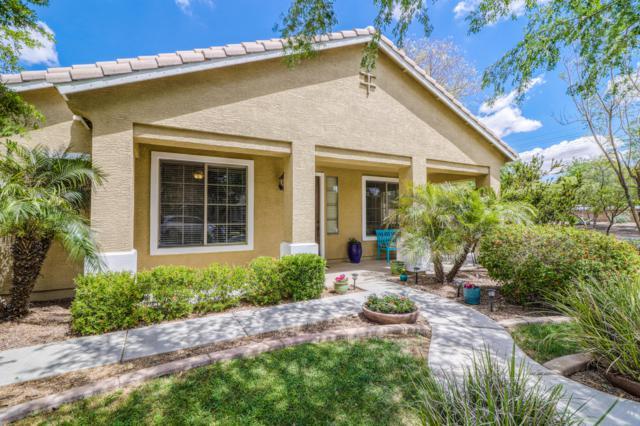 19180 E Lark Drive, Queen Creek, AZ 85142 (MLS #5913231) :: Yost Realty Group at RE/MAX Casa Grande