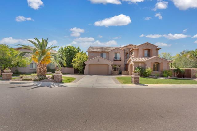 5617 W Andrea Drive, Phoenix, AZ 85083 (MLS #5913247) :: Yost Realty Group at RE/MAX Casa Grande