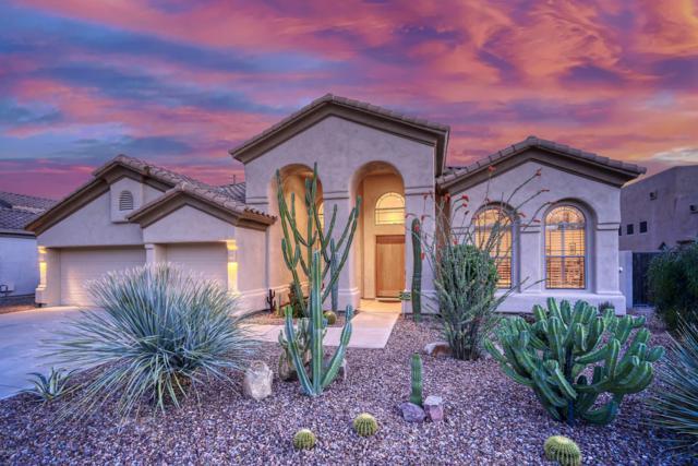 4809 E Cielo Grande Avenue, Phoenix, AZ 85054 (MLS #5913275) :: Occasio Realty