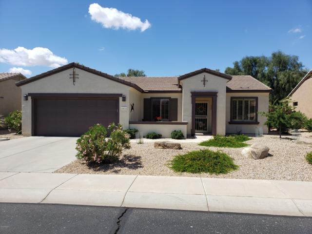 18614 N Summerbreeze Way, Surprise, AZ 85374 (MLS #5913289) :: The W Group