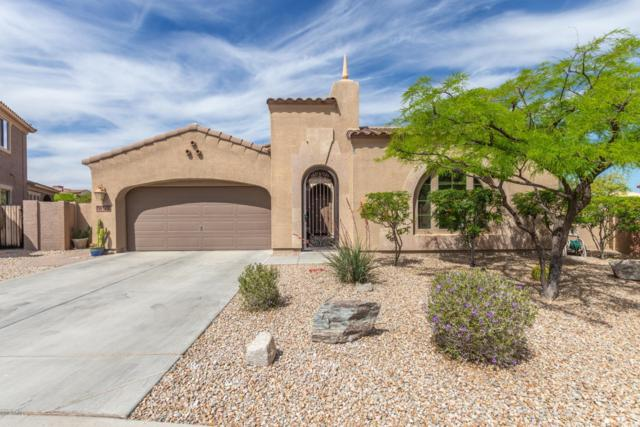 18178 W Gold Poppy Way, Goodyear, AZ 85338 (MLS #5913298) :: Cindy & Co at My Home Group
