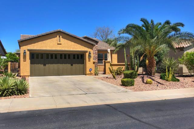 12678 W Jasmine Trail, Peoria, AZ 85383 (MLS #5913317) :: The Results Group