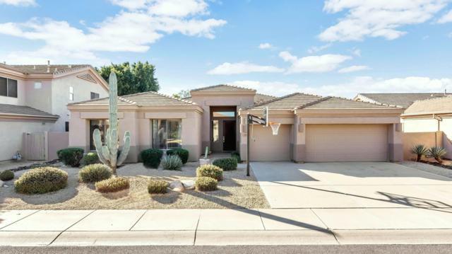 7447 E Quill Lane, Scottsdale, AZ 85255 (MLS #5913336) :: The Ford Team