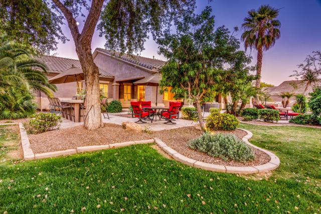 22450 S 201ST Court, Queen Creek, AZ 85142 (MLS #5913338) :: Occasio Realty