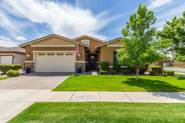 4129 E Marlene Drive, Gilbert, AZ 85296 (MLS #5913342) :: Revelation Real Estate