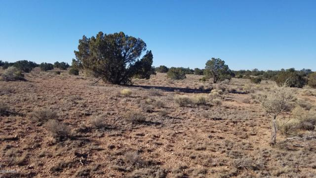 2028 S Hollyhock Lane, Valle, AZ 86046 (MLS #5913373) :: The Property Partners at eXp Realty