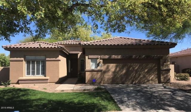 4366 E Branded Court, Gilbert, AZ 85297 (MLS #5913405) :: Yost Realty Group at RE/MAX Casa Grande