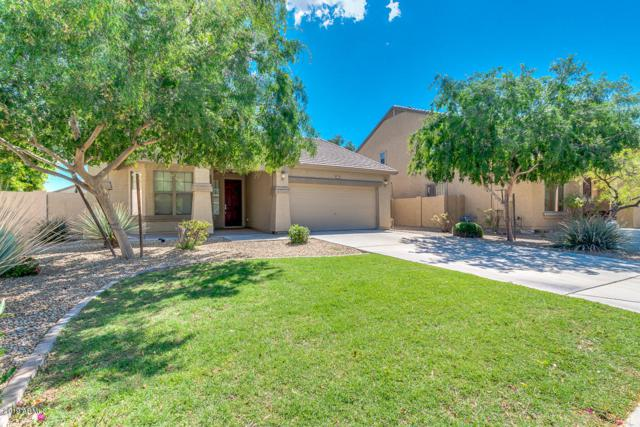 151 S 108TH Avenue Av, Avondale, AZ 85323 (MLS #5913409) :: Keller Williams Realty Phoenix