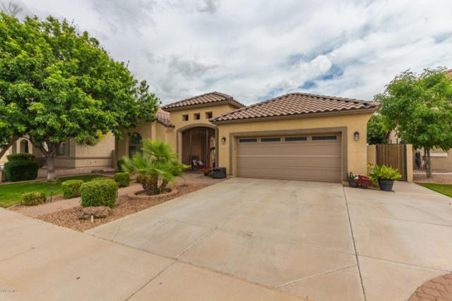 21461 E Lords Way, Queen Creek, AZ 85142 (MLS #5913423) :: Kepple Real Estate Group