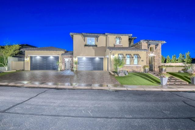 28772 N 67TH Drive, Peoria, AZ 85383 (MLS #5913451) :: Team Wilson Real Estate