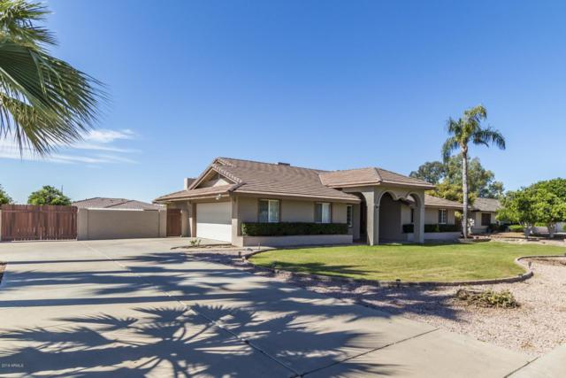 8435 W Via Montoya Drive, Peoria, AZ 85383 (MLS #5913484) :: Cindy & Co at My Home Group