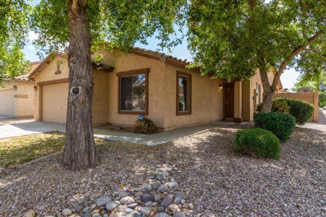 1561 E Maddison Circle, San Tan Valley, AZ 85140 (MLS #5913485) :: Kepple Real Estate Group