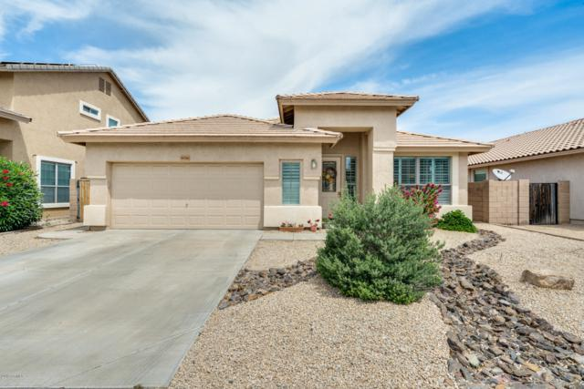 9058 W Clara Lane, Peoria, AZ 85382 (MLS #5913511) :: Yost Realty Group at RE/MAX Casa Grande
