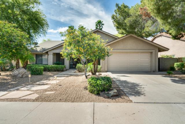 5725 E Hillery Drive, Scottsdale, AZ 85254 (MLS #5913538) :: Kepple Real Estate Group