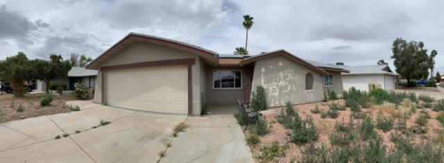 5350 W Evans Drive, Glendale, AZ 85306 (MLS #5913548) :: Kortright Group - West USA Realty