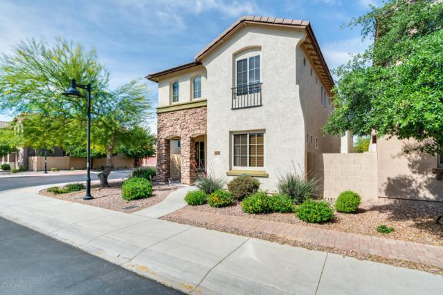 9132 W Coolbrook Avenue, Peoria, AZ 85382 (MLS #5913556) :: Kepple Real Estate Group