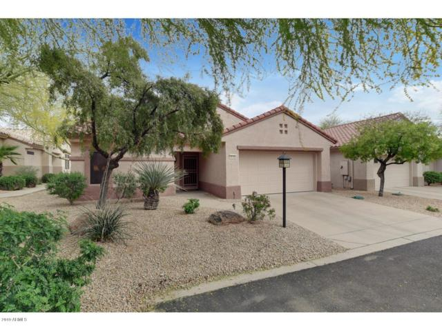 16142 W Starlight Drive, Surprise, AZ 85374 (MLS #5913581) :: Kortright Group - West USA Realty
