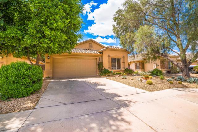10853 E Wier Avenue, Mesa, AZ 85208 (MLS #5913602) :: Kepple Real Estate Group
