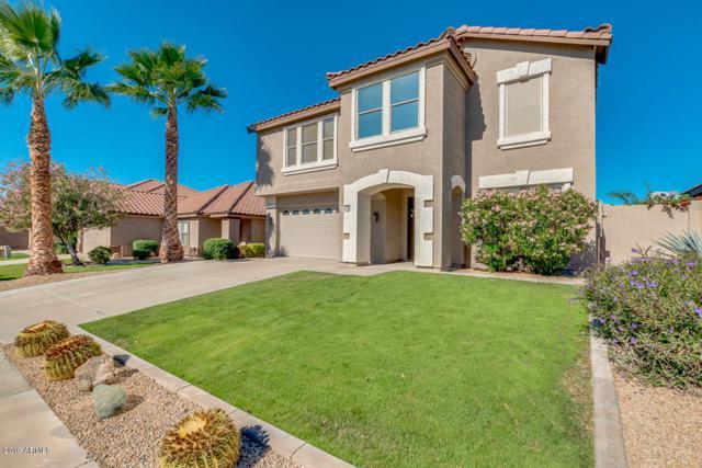 4042 E Pinto Lane, Phoenix, AZ 85050 (MLS #5913605) :: Occasio Realty