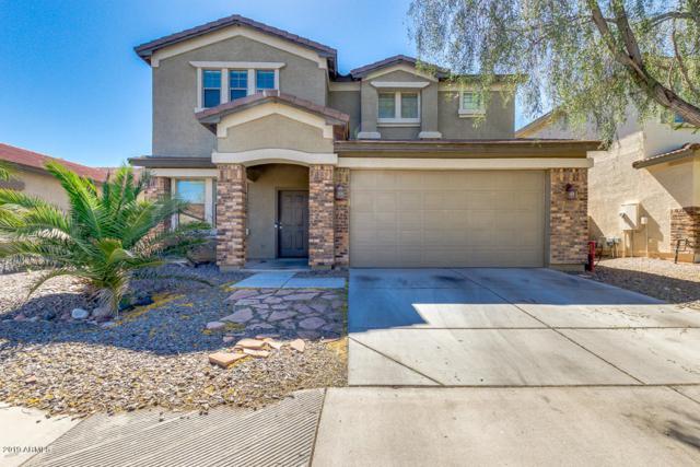 28145 N Desert Native Street, San Tan Valley, AZ 85143 (MLS #5913620) :: Kepple Real Estate Group