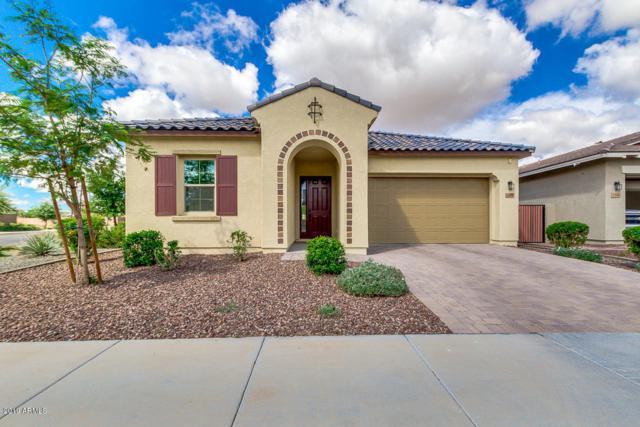5400 S Luiseno Boulevard, Gilbert, AZ 85298 (MLS #5913629) :: Yost Realty Group at RE/MAX Casa Grande