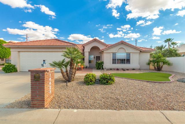 10625 E Coopers Hawk Drive, Sun Lakes, AZ 85248 (MLS #5913638) :: Yost Realty Group at RE/MAX Casa Grande