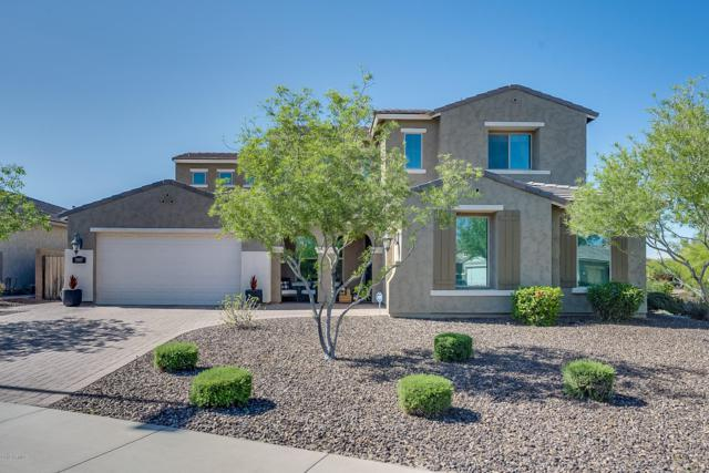 3907 E Peartree Lane, Gilbert, AZ 85298 (MLS #5913649) :: Occasio Realty