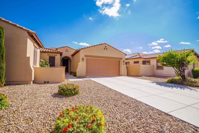 19139 W Georgia Avenue, Litchfield Park, AZ 85340 (MLS #5913658) :: Kepple Real Estate Group
