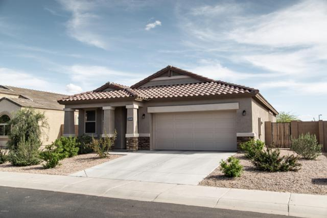 25391 W Darrel Drive, Buckeye, AZ 85326 (MLS #5913659) :: The Garcia Group