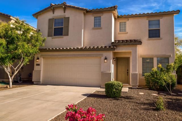 909 E Daniella Drive, San Tan Valley, AZ 85140 (MLS #5913665) :: Yost Realty Group at RE/MAX Casa Grande