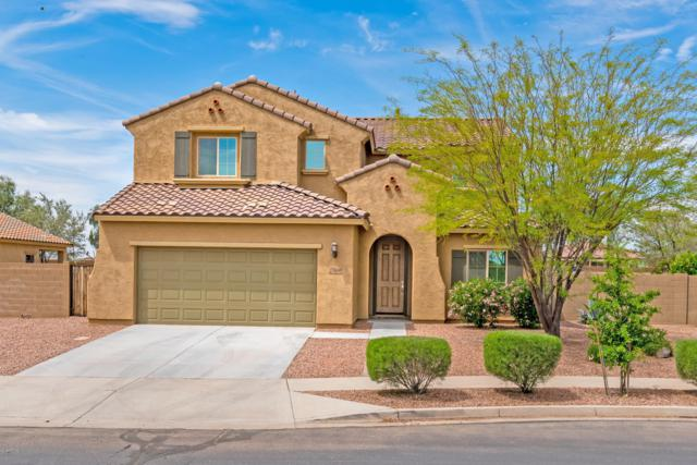 27604 N 172nd Avenue, Surprise, AZ 85387 (MLS #5913678) :: Kortright Group - West USA Realty