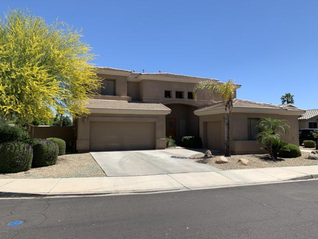 3337 N 144TH Drive, Goodyear, AZ 85395 (MLS #5913697) :: Cindy & Co at My Home Group