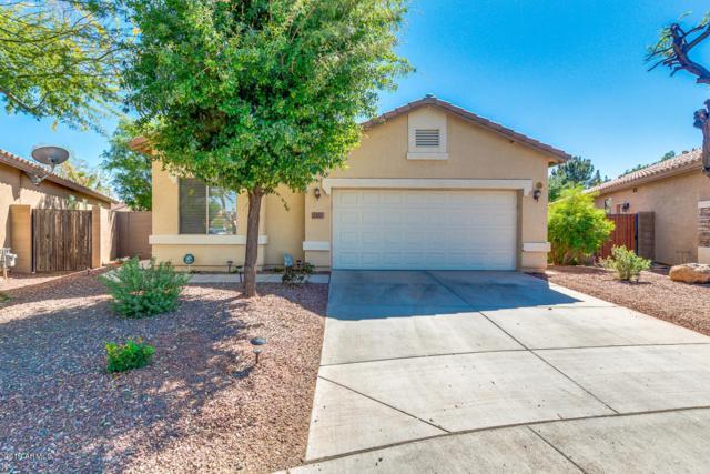 12637 W Cercado Lane, Litchfield Park, AZ 85340 (MLS #5913701) :: Devor Real Estate Associates